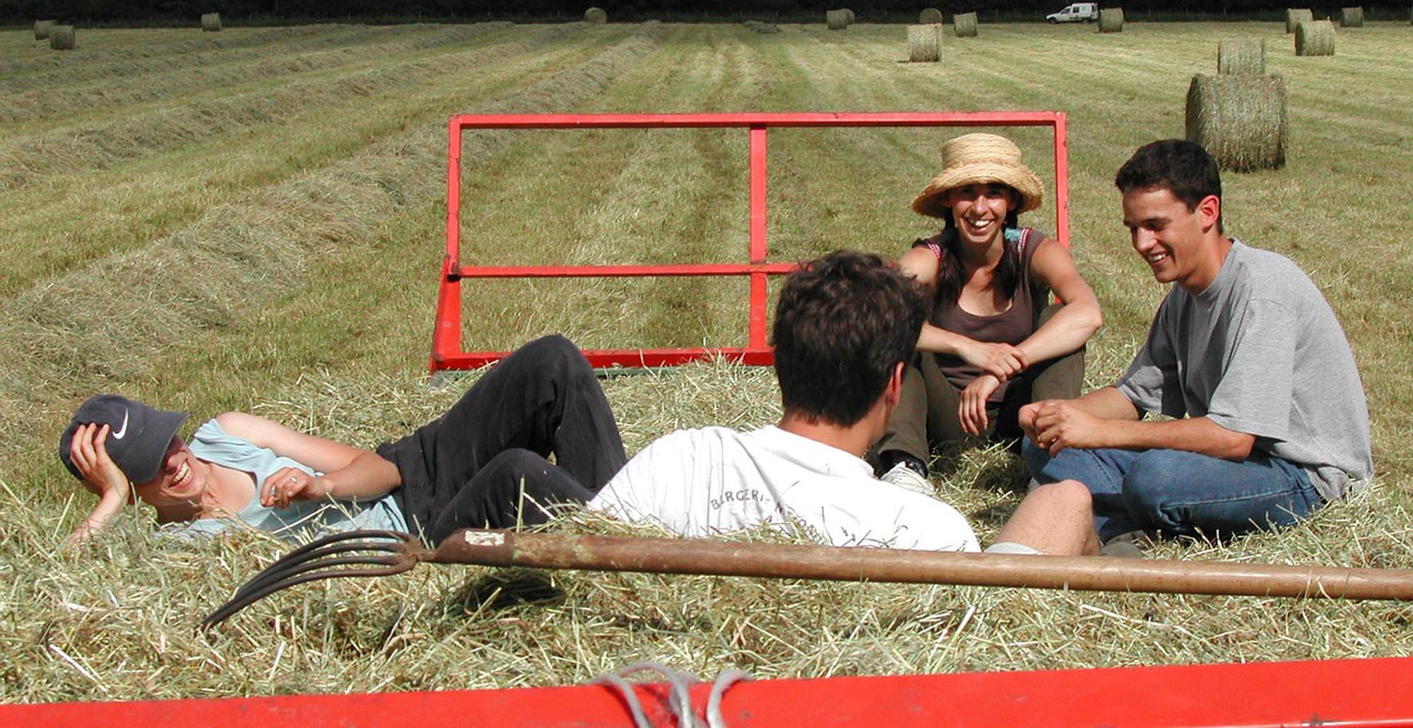 Foto  di ragazzi seduti nei campi di grano con strumenti agricoli